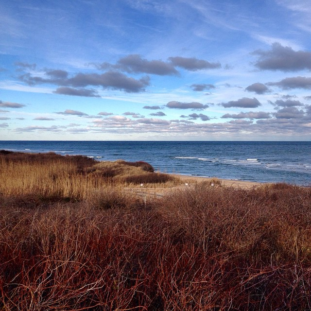 Bluffs at Nauset Light