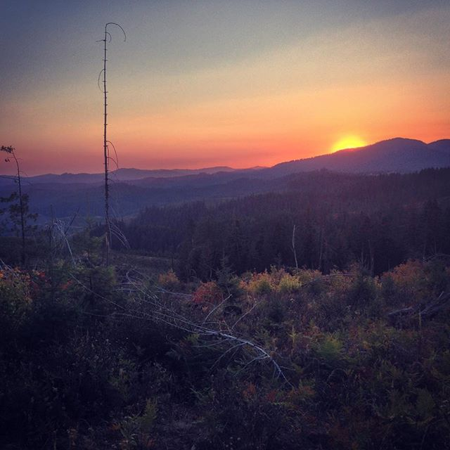 Sunset in St. Joe National Forest